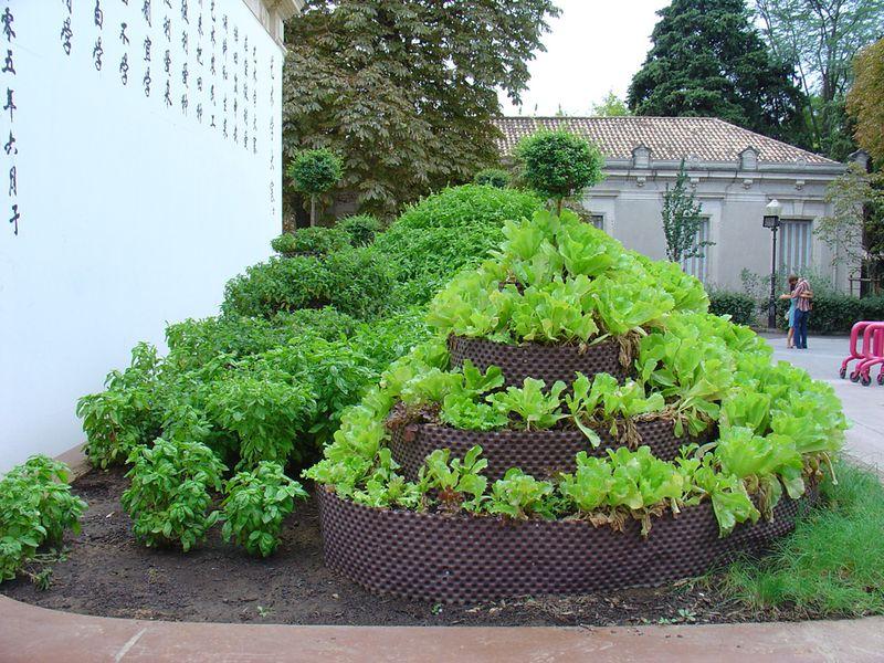 Salad installation